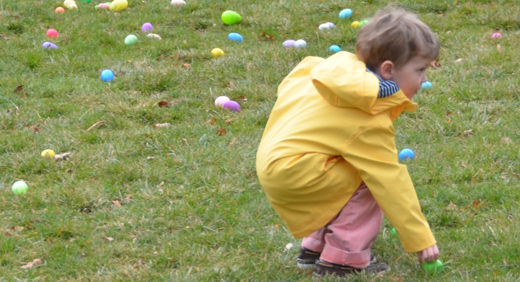 Egg hunt photo